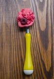 Homemade Organic Raspberry Ice Cream. Top view Stock Images