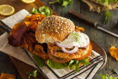 Homemade Organic Salmon Burger Stock Images