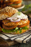 Homemade Organic Salmon Burger Royalty Free Stock Images