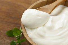 Homemade organic sour cream Royalty Free Stock Image
