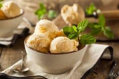 Homemade Organic Vanilla Ice Cream Stock Image