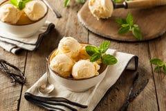 Homemade Organic Vanilla Ice Cream Stock Photography