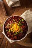Homemade Organic Vegetarian Chili Stock Photography