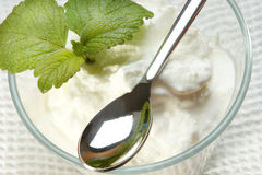 Homemade organic yogurt with lemon mint Royalty Free Stock Photography