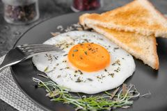Homemade over easy fried egg with toasts Royalty Free Stock Photos