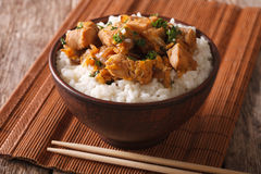 Homemade oyakodon and rice close-up in a bowl. horizontal Stock Photos