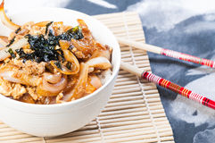 Oyakudon on a bowl Stock Images