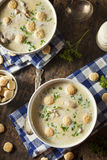 Homemade Oyster Stew with Parsley Royalty Free Stock Photos