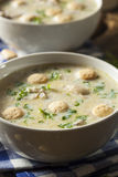 Homemade Oyster Stew with Parsley Stock Photos