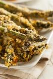 Homemade Panko Breaded Asparagus Royalty Free Stock Photos