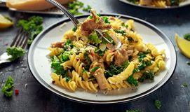 Homemade Pasta fusilli with Chicken, Green Kale, Garlic, lemon and parmesan cheese. healthy home food royalty free stock photography