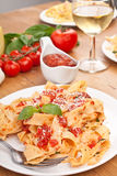 Homemade Pasta with Tomato Sauce royalty free stock photo