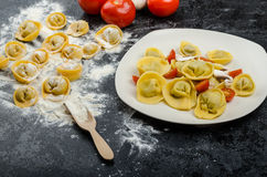 Homemade pasta tortellini stuffed Royalty Free Stock Photography