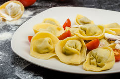 Homemade pasta tortellini stuffed Stock Images