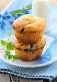 Homemade pastries, sweet vanilla cupcakes Stock Photos