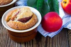 Homemade peach cake in a ramekin. With fresh peaches around Royalty Free Stock Photo