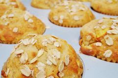 Homemade peach oatmeal muffins Royalty Free Stock Photos