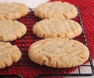 Homemade Peanut Butter Cookies Stock Images