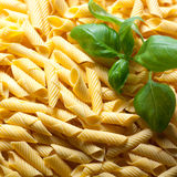 Homemade penne with basil leaf Royalty Free Stock Photo