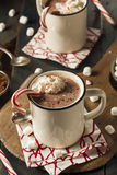 Homemade Peppermint Hot Chocolate Royalty Free Stock Photography