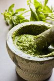Homemade Pesto Royalty Free Stock Photography