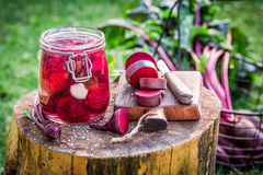 Homemade pickled beetroots in the jar Stock Photos