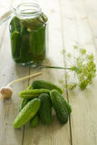 Homemade pickled cucumbers Stock Photos