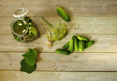 Homemade pickled cucumbers stock photography
