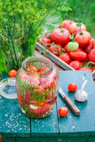 Homemade pickled tomatoes in the jar Royalty Free Stock Images
