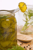 Homemade pickles Stock Photos