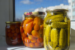 Homemade pickles in jar Stock Photography