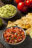 Homemade Pico De Gallo Salsa and Chips Royalty Free Stock Photo