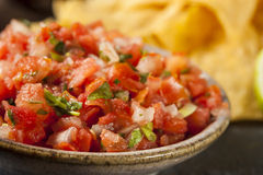 Homemade Pico De Gallo Salsa and Chips Stock Image