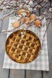Homemade pie on checkered napkin Stock Photos