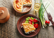Homemade pie with feta cheese and spinach Royalty Free Stock Photos