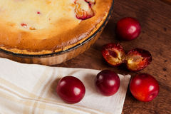 Homemade pie with plum Stock Image