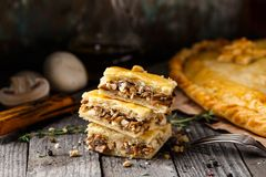 Homemade pie stuffed with mushrooms Royalty Free Stock Images