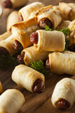 Homemade Pigs in a Blanket Stock Images