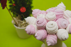 Homemade pink and white marshmallow Stock Photos