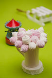 Homemade pink and white marshmallow Stock Images