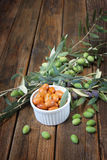 Homemade piquant olives, olive tree branch and raw olives. Stock Photography
