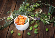 Homemade piquant olives, olive tree branch and raw olives. Stock Image