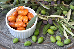 Homemade piquant olives, olive tree branch and raw olives. Stock Photos