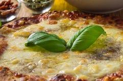 Homemade pizza. Stock Photo