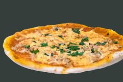 Simple homemade pizza in the oven. This homemade pizza with chicken meat and neapolitan sauce will fit for sunday`s family dinner Royalty Free Stock Photos