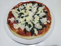 Homemade pizza. On a plate Royalty Free Stock Photos