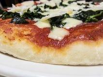 Homemade pizza. Real italian homemade pizza portrait Stock Image
