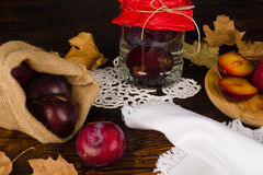 Homemade plum brandy Royalty Free Stock Photo