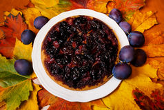 Homemade plum cake and autumn leaves Royalty Free Stock Images