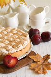 Homemade plum cake Royalty Free Stock Images